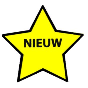 Magneet Ster Nieuw